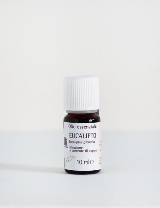 Olio essenziale di Eucalipto - 10 ml - Olfattiva