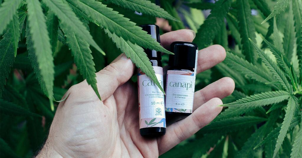 olio essenziale di cannabis sativa
